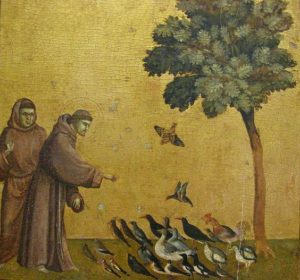 giotto-francis-preaching-to-the-birds
